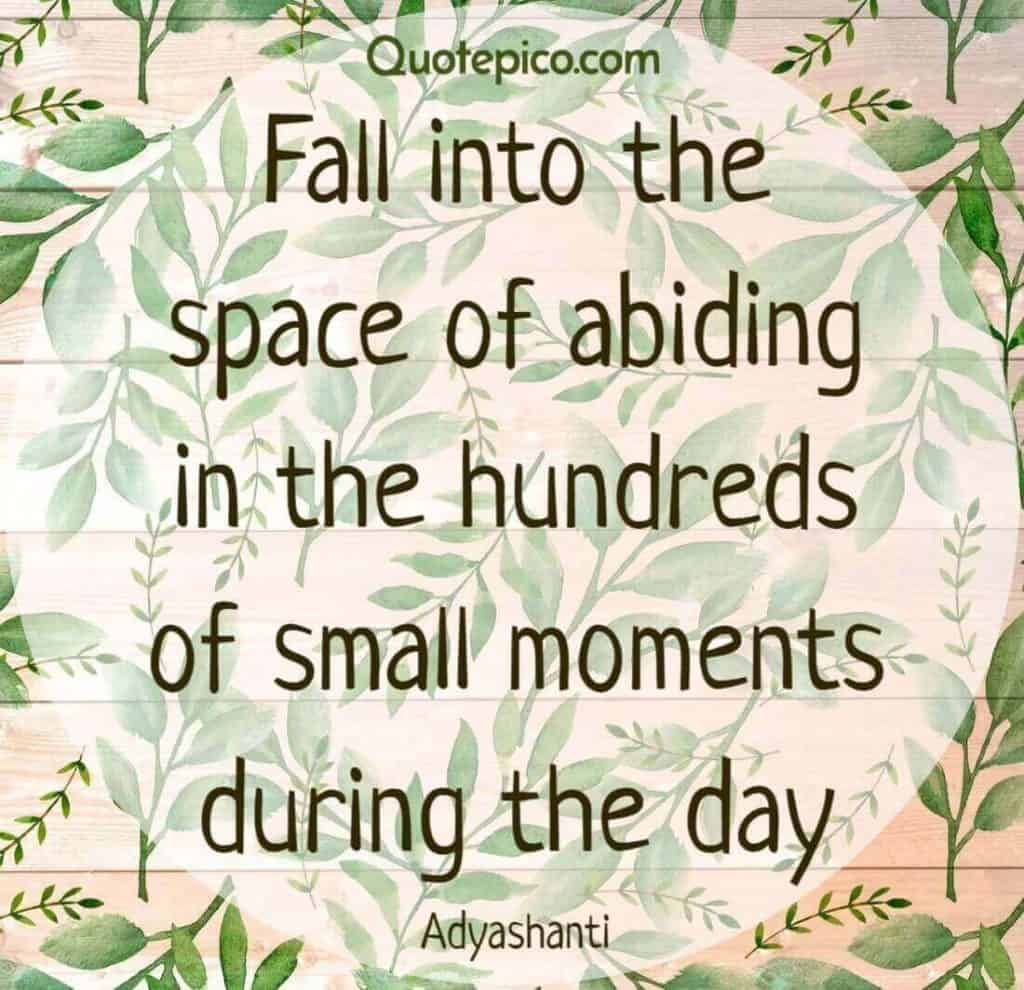 Adyashanti abide small moments quote